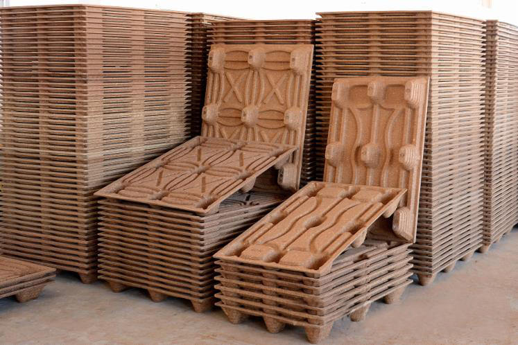 molded pallets made by wood pallet machine from thoyu