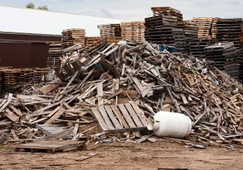 We can make money by Wood waste recycling business