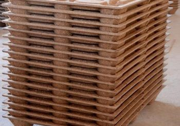 The Next Big Thing in Compressed Wood Pallets